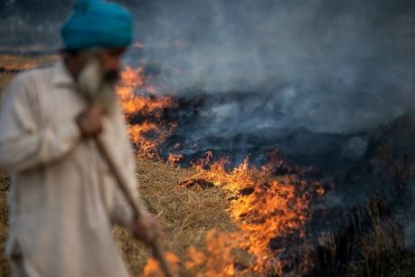 पंजाब सरकार का नया 'प्लान', 7 हजार करोड़ से काबू होगा पराली का धुआं