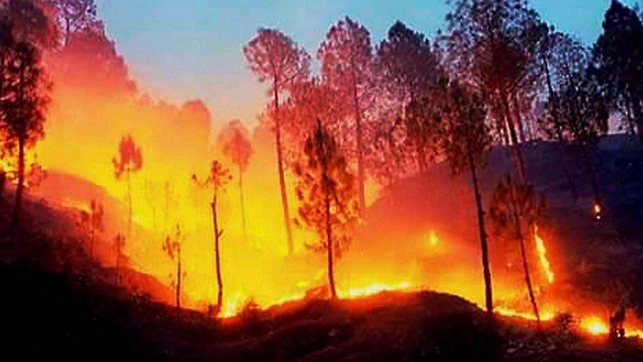 जंगल में लगी आग, वैष्णो देवी यात्रा पर लगी रोक