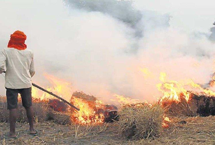 सरकार ने ठोका हरियाणा के 322 किसानों पर जुर्माना, जानें क्या है वजह