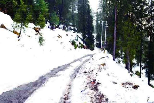 मौसम: हिमाचल में बर्फ की चादर, 8 जिलों में हो रही बर्फबारी