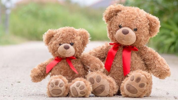 Teddy Day 2019: पार्टनर को करें टेडी गिफ्ट