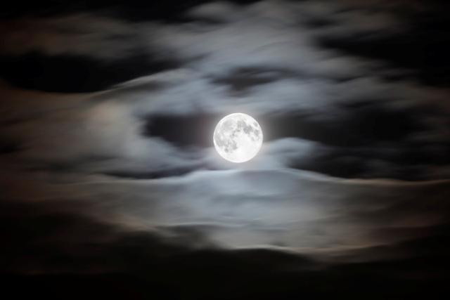 शरद पूर्णिमा का वैज्ञानिक महत्व, इस रात चंद्रमा से बढ़ जाती है औषधियों की ताकत