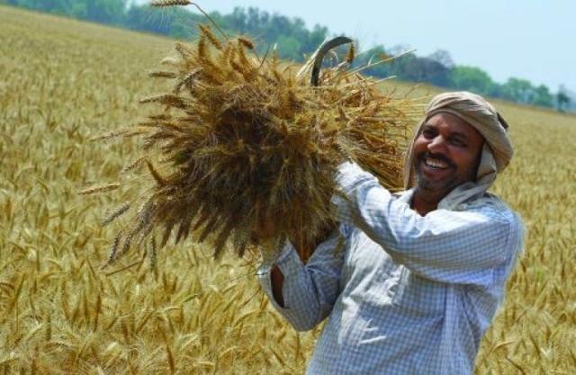 हरियाणा सरकार की किसानों को राहत, बिजली कनेक्शनों के बकाया बिलों पर जुर्माना राशि में छूट