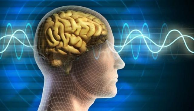 दिमाग की पावर को बढाना है तो करें ये आसान से काम, होगा फायदा