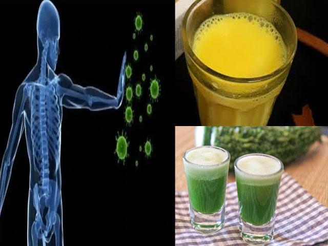 कोरोना को मात देने के लिए अगर Immune System को बनाना है मजबूत, तो ये पेय पदार्थ हो सकते हैं मददगार