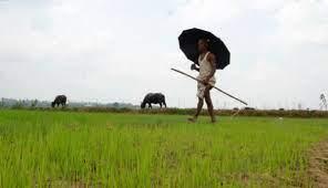 केंद्र सरकार की ओर से जल्द ही किसानों के खातों में आने वाली है 9वीं किस्त, ऐसे करें अप्लाई