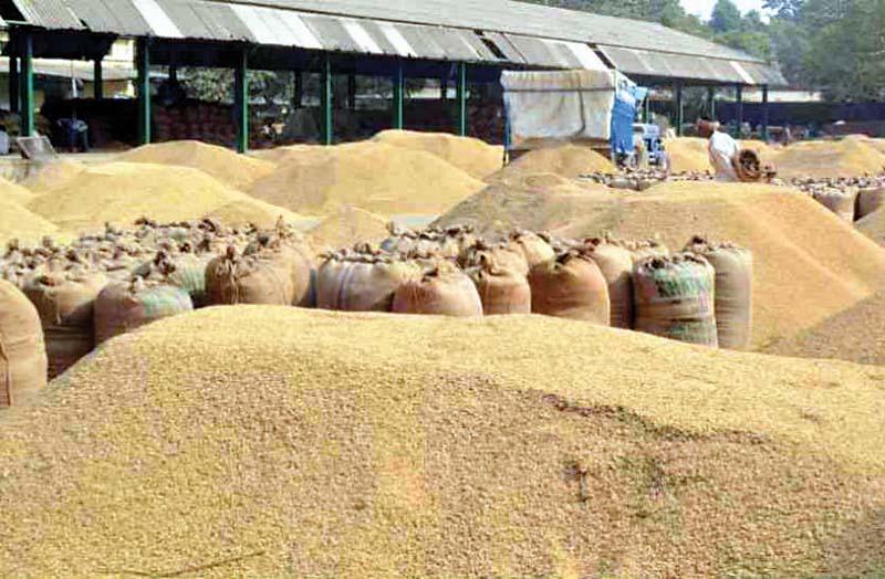 हिमाचल किसानों को पंजाब में धान बेचना पड़ा भारी, पंजाब पुलिस ने ट्रैक्टर-ट्रालियों को किया सीज