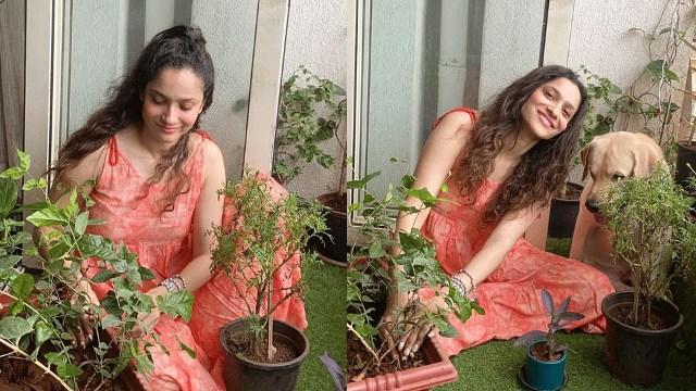 Sushant के अधूरे सपने को पूरा करने के लिए Ankita Lokhande करेंगी ये खास काम